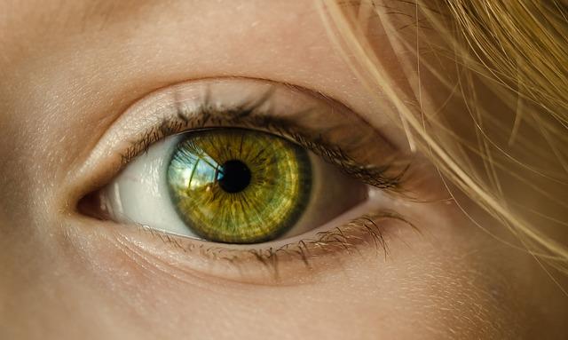 vid-oko-hrana