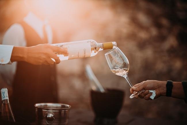 vino-bonton